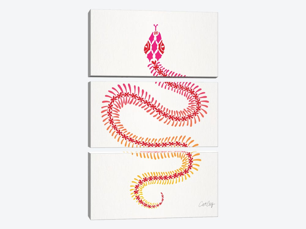 Pink Ombré Snake Skeleton by Cat Coquillette 3-piece Canvas Art