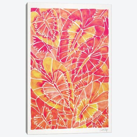 Pink Schismatoglottis Calyptrata Canvas Print #CCE423} by Cat Coquillette Art Print