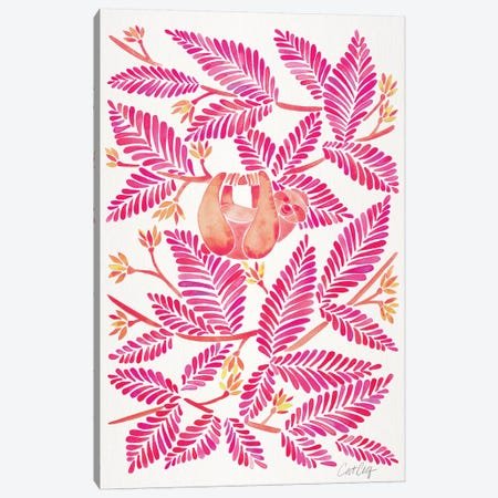 Pink Sloth Canvas Print #CCE424} by Cat Coquillette Canvas Artwork