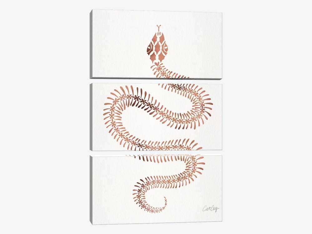 Rose & Gold Snake Skeleton by Cat Coquillette 3-piece Canvas Artwork