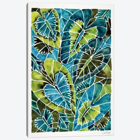 Teal Schismatoglottis Calyptrata Canvas Print #CCE437} by Cat Coquillette Canvas Art Print
