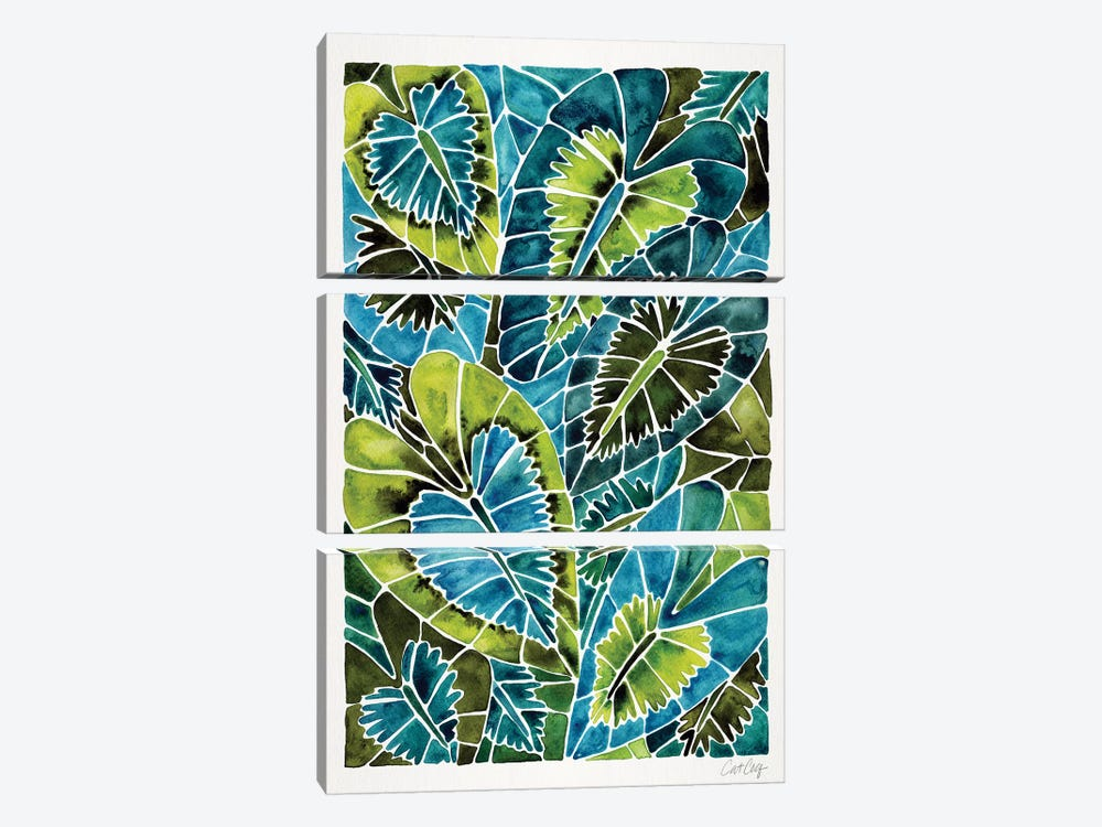 Teal Schismatoglottis Calyptrata by Cat Coquillette 3-piece Canvas Print