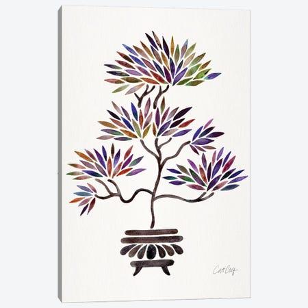 Vintage Bonsai Canvas Print #CCE444} by Cat Coquillette Canvas Art