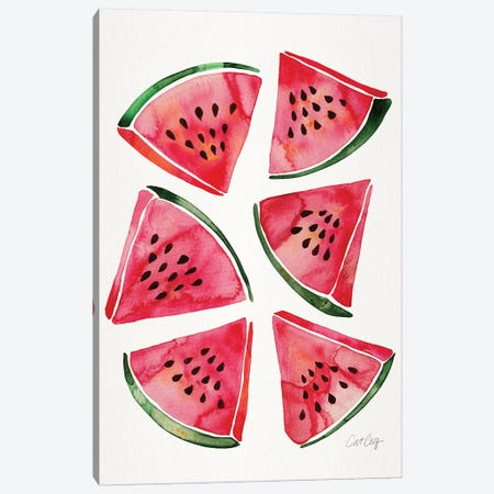 Watermelon Canvas Print #CCE445} by Cat Coquillette Canvas Art
