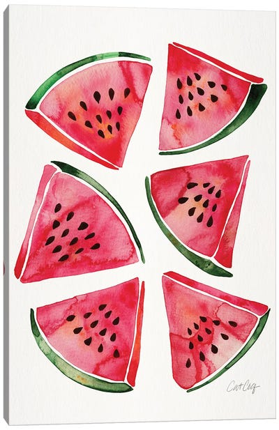 Watermelon by Cat Coquillette Canvas Art Print