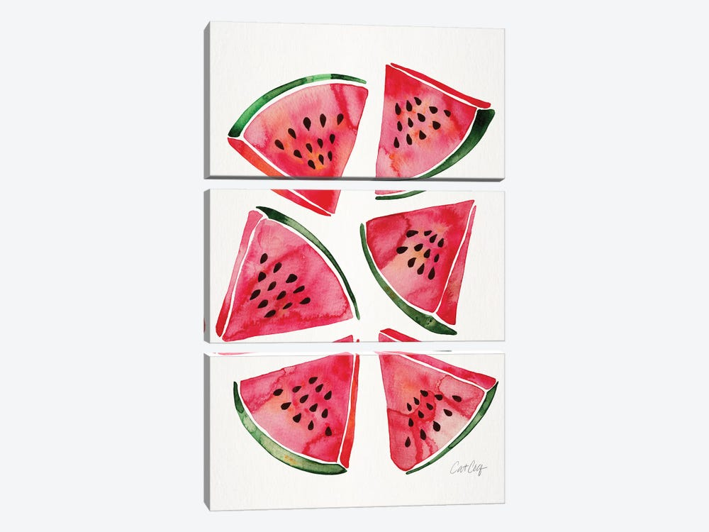 Watermelon by Cat Coquillette 3-piece Canvas Art
