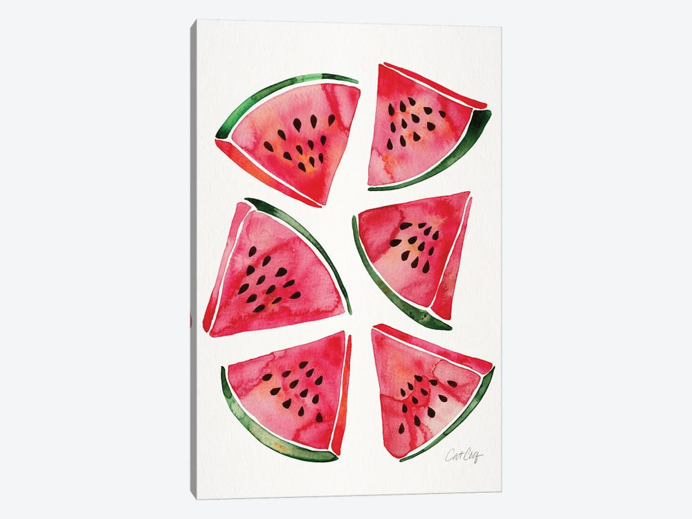 Watermelon by Cat Coquillette 1-piece Canvas Art