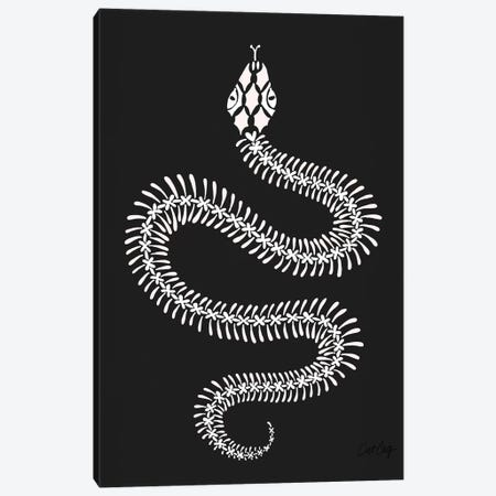 White Snake Skeleton Canvas Print #CCE447} by Cat Coquillette Canvas Wall Art