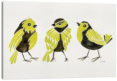 Yellow Finches Canvas Art Print