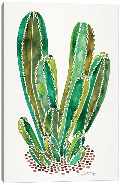 Green - Cactus Cluster Canvas Art Print