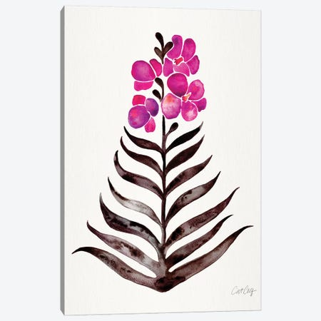 Magenta Black - Orchid Bloom 3-Piece Canvas #CCE464} by Cat Coquillette Canvas Wall Art