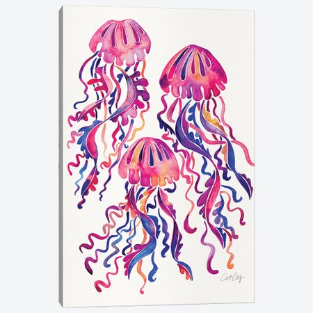 Magenta - Jellyfish Canvas Print #CCE465} by Cat Coquillette Canvas Art