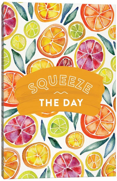 Multi-Squeeze The Day Canvas Art Print