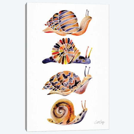 Snail Collection Canvas Print #CCE486} by Cat Coquillette Canvas Artwork