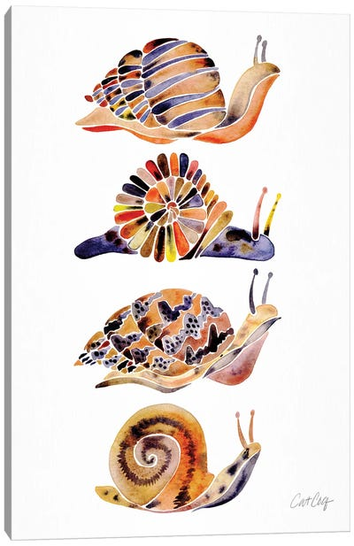 Snail Collection Canvas Art Print