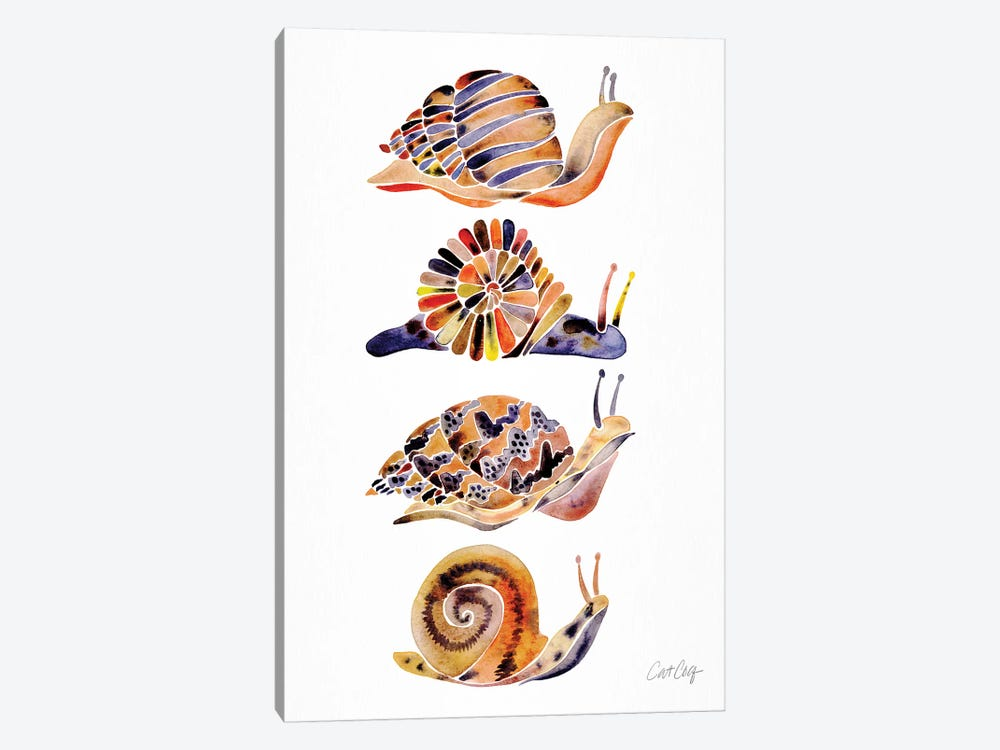 Snail Collection by Cat Coquillette 1-piece Canvas Print