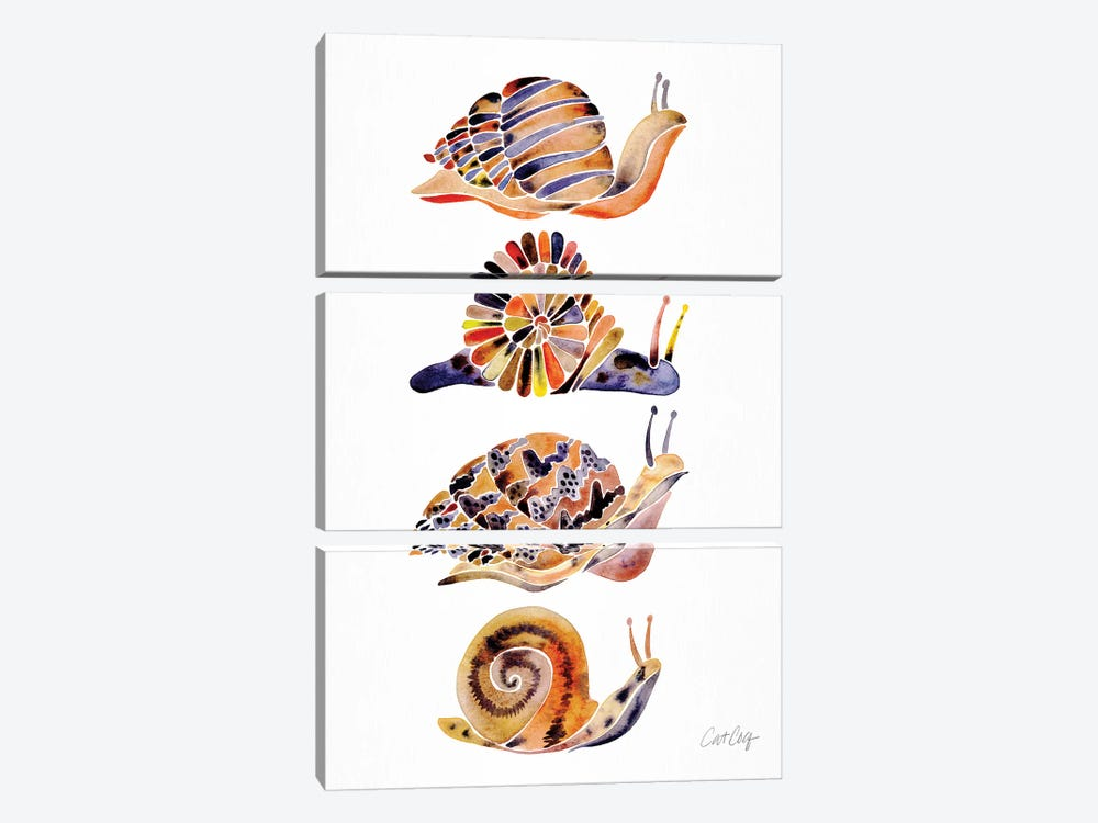 Snail Collection by Cat Coquillette 3-piece Canvas Print