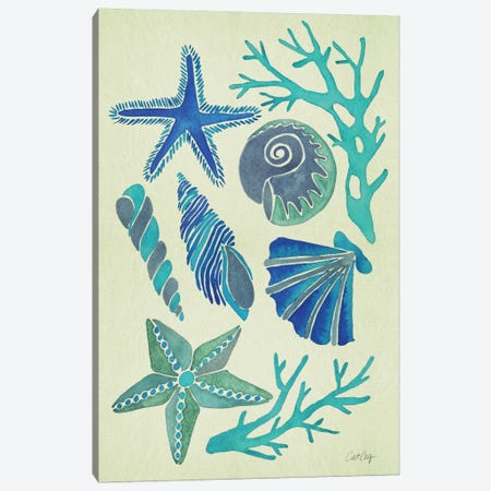 Blue Seashells Artprint Canvas Print #CCE79} by Cat Coquillette Canvas Art Print