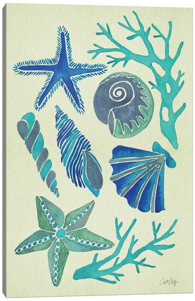 Blue Seashells Artprint Canvas Print #CCE79