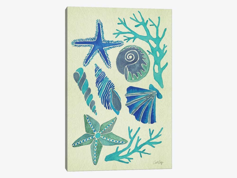 Blue Seashells by Cat Coquillette 1-piece Canvas Print