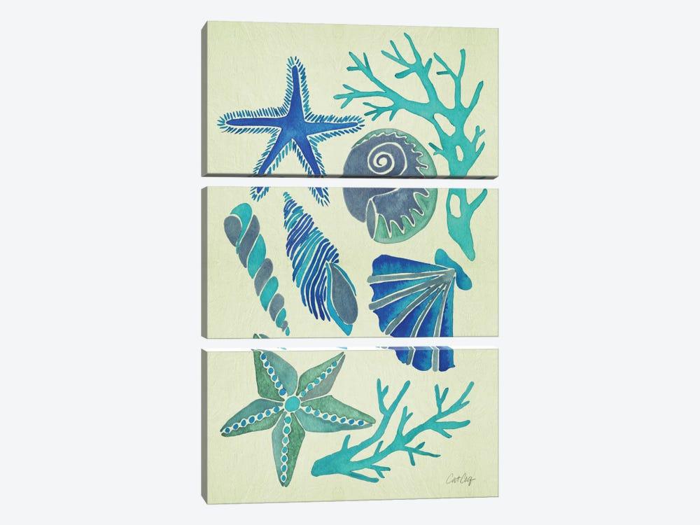 Blue Seashells by Cat Coquillette 3-piece Art Print