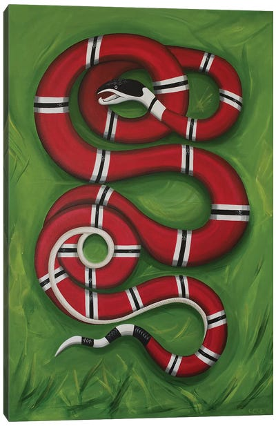 Snake on the Grass Canvas Art Print