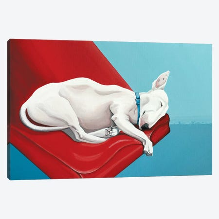 Sleeping Bull Terrier Canvas Print #CCG33} by CeCe Guidi Art Print