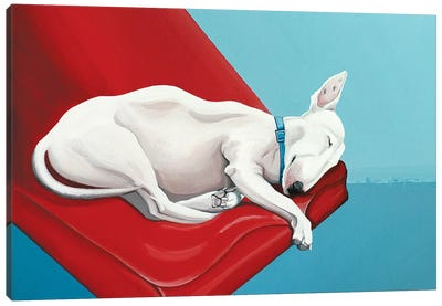 Sleeping Bull Terrier Canvas Art Print