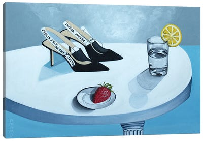 Still Life With Dior Shoes Canvas Art Print