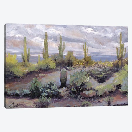 Desert And Rain I Canvas Print #CCK15} by Christopher Clark Canvas Art