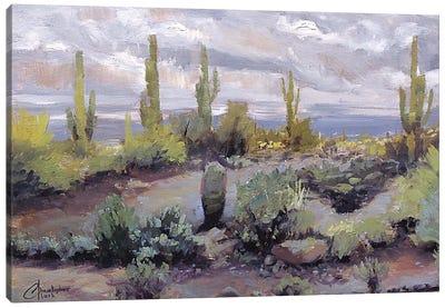 Desert And Rain I Canvas Art Print