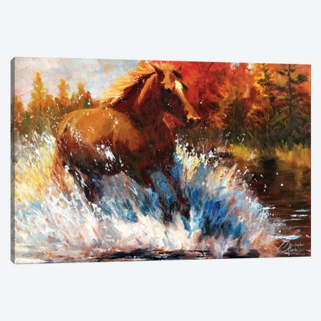 Freedom Canvas Print #CCK22} by Christopher Clark Canvas Artwork