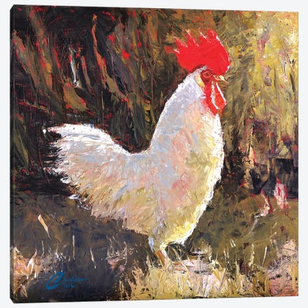 Gallo Italiano I Canvas Print #CCK23} by Christopher Clark Canvas Artwork