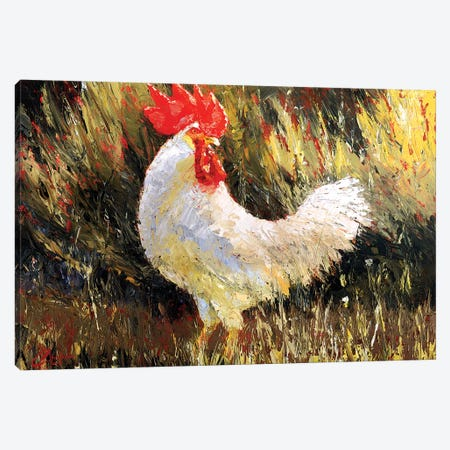 Gallo Italiano II Canvas Print #CCK24} by Christopher Clark Canvas Art Print
