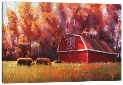 Big Red Barn In Arvada, Colorado Canvas Art Print