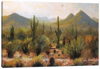 Morning At Lost Dog Wash Trail Canvas Art Print