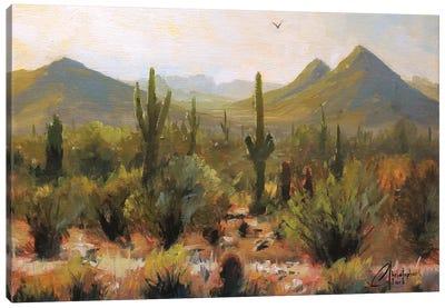Morning At Lost Dog Wash Trail Canvas Art Print