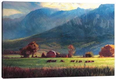 Rocky Mountain Farm Canvas Art Print