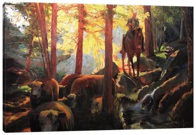 Rough Terrain Canvas Art Print