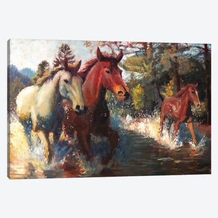 Trifecta Canvas Print #CCK73} by Christopher Clark Canvas Art Print