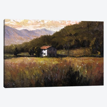 Tuscany, Italy, Walking To The Rose Field I Canvas Print #CCK75} by Christopher Clark Canvas Artwork