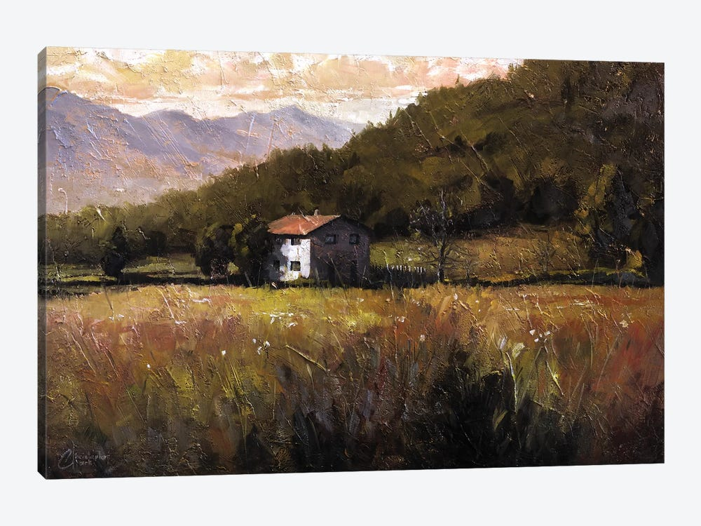 Tuscany, Italy, Walking To The Rose Field I by Christopher Clark 1-piece Canvas Artwork