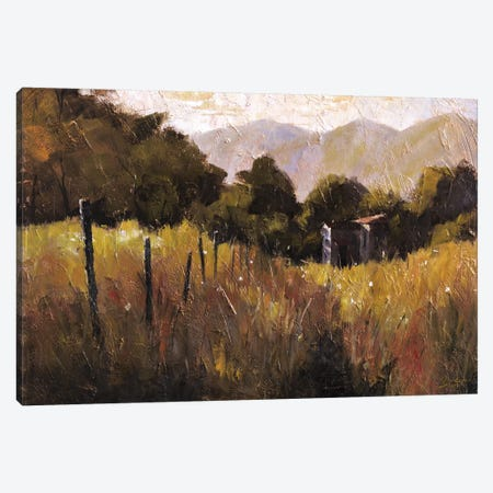 Tuscany, Italy, Walking To The Rose Field II Canvas Print #CCK76} by Christopher Clark Canvas Artwork