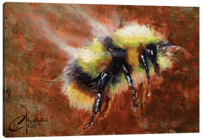 Abstract Form Study - Bee Canvas Art Print