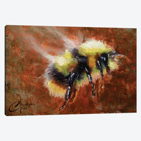 Abstract Form Study - Bee 3-Piece Canvas #CCK92} by Christopher Clark Canvas Art Print