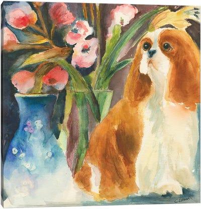 Cavalier Of Mine Canvas Art Print