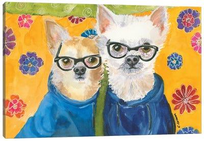 Chihuahuas In Blue Canvas Art Print