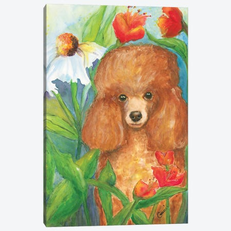 Garden Poodle Canvas Print #CCM22} by Connie Collum Canvas Art