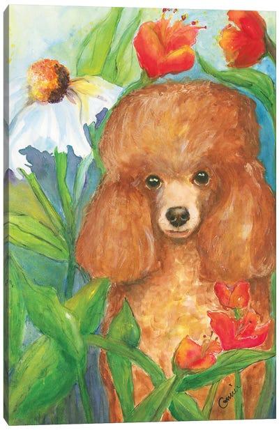 Garden Poodle Canvas Art Print