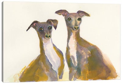 Italian Greyhounds, The Lovliest Of The Hounds Canvas Art Print